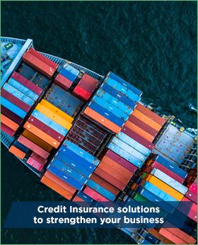Affiancare le imprese per tutelarle dai rischi di mancato pagamento