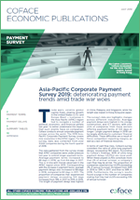 APAC-payment-Survey